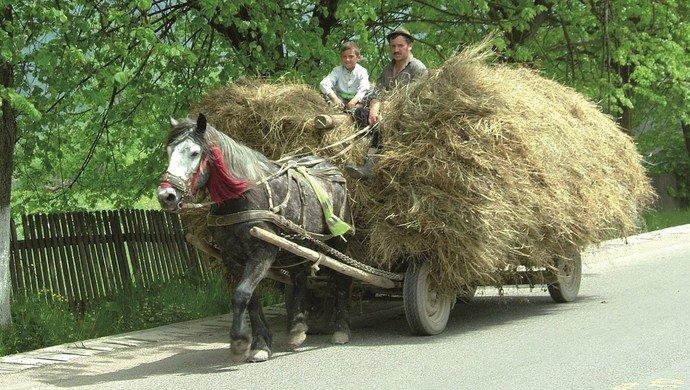 Exkursion Agrarwissenschaften