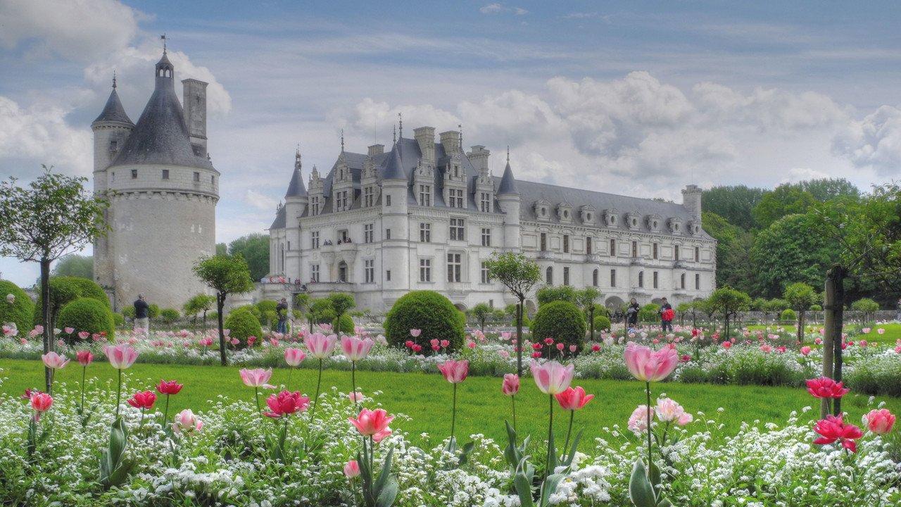 Schloss an der Loire mit Tulpen