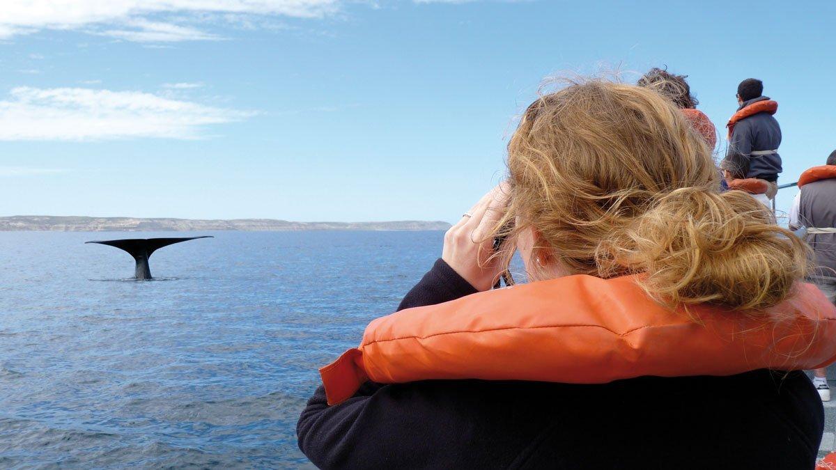 Schülerin beim whale watching