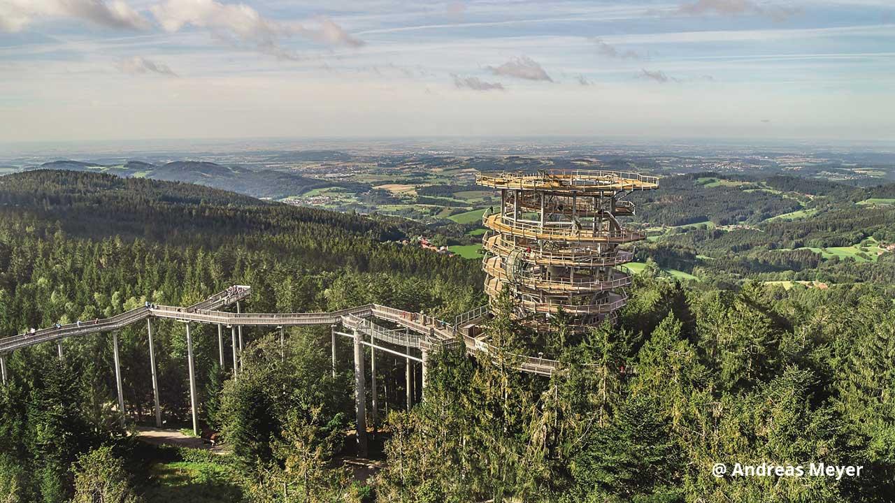 Baumwipfelpfad im Bayerischen Wald