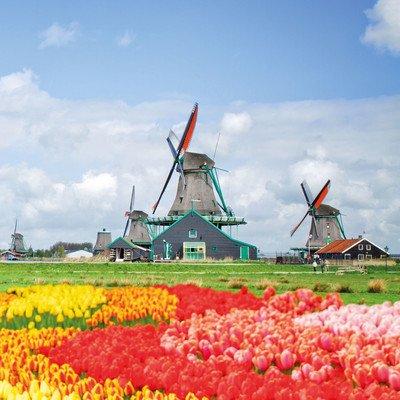 Alle Programmbausteine Niederländische Nordseeküste auf einen blick