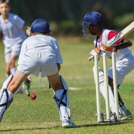 Cricket Schnuppertraining