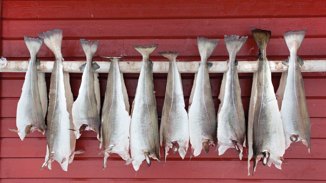Stockfisch am Haus