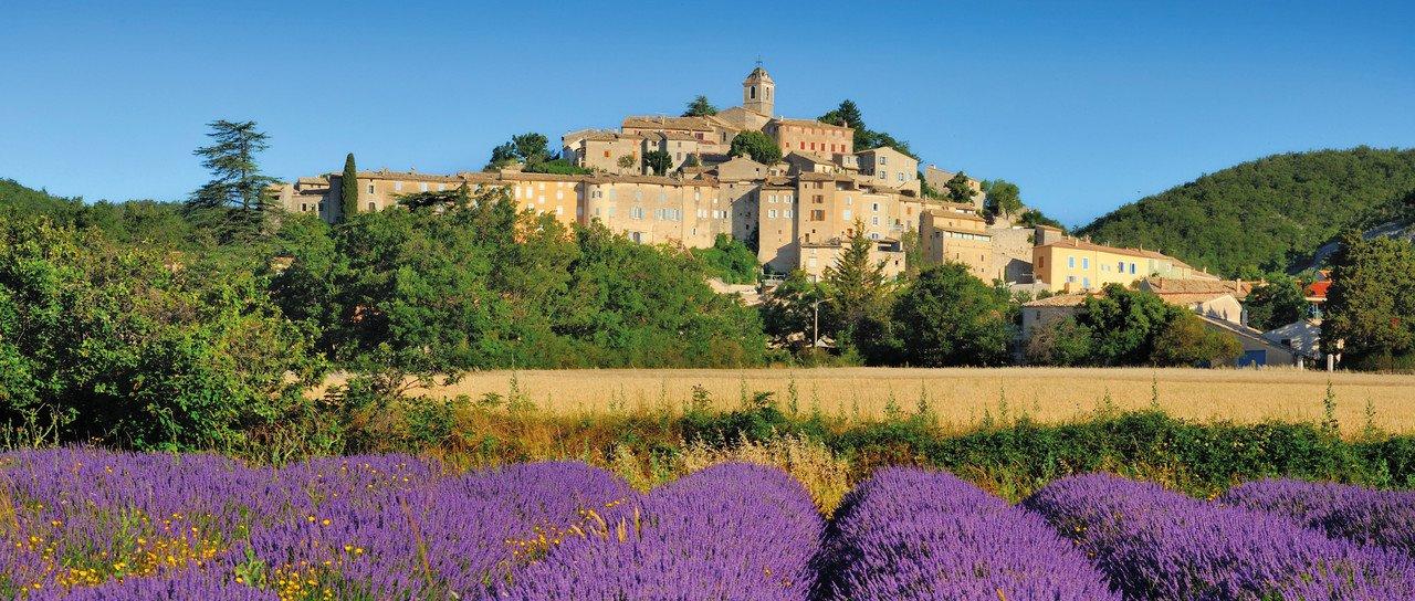 Blick auf Lavendelfeld mit Burg im Hintergrund