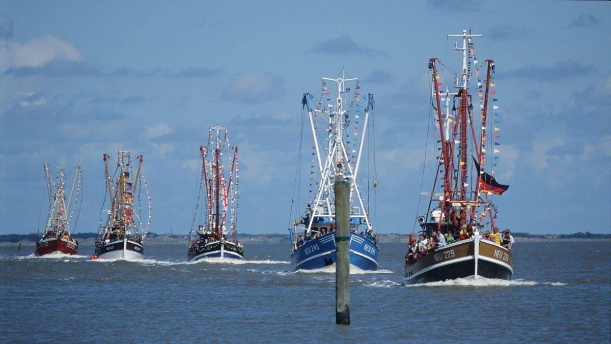 Nordseekutter in Cuxhaven