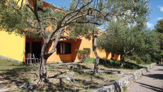 Apartments Medena