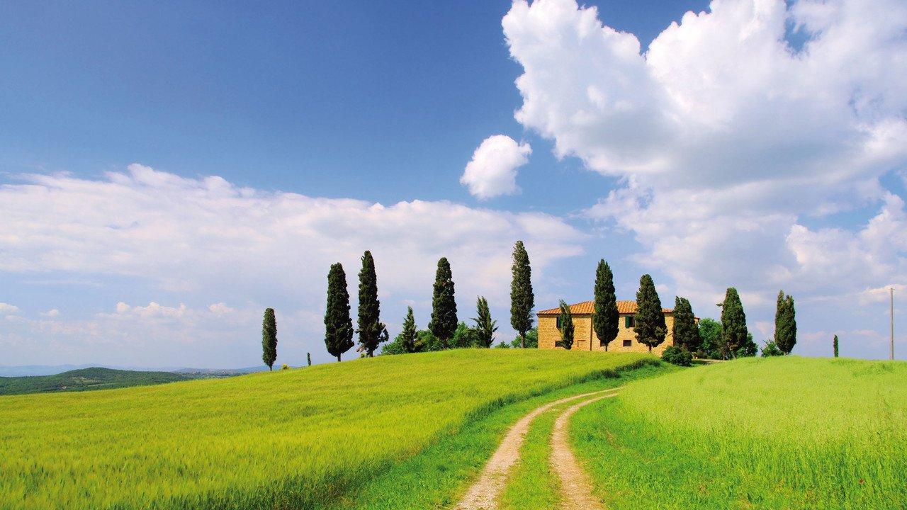 Ein Hügel in der Toskana, malerisch mit Säulenzypressen bewachsen.