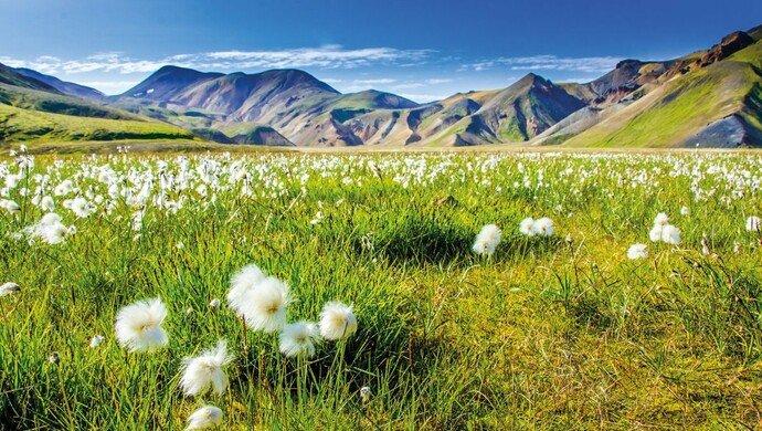 Gruppenreise Islands Naturparadiese