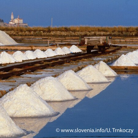 Salzwelten von Secovlje
