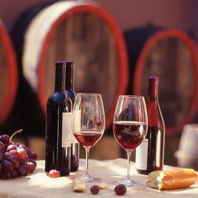 Besuch einer Weinkellerei