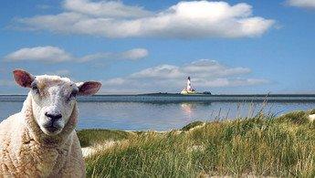 Klassenfahrt an die Nordsee
