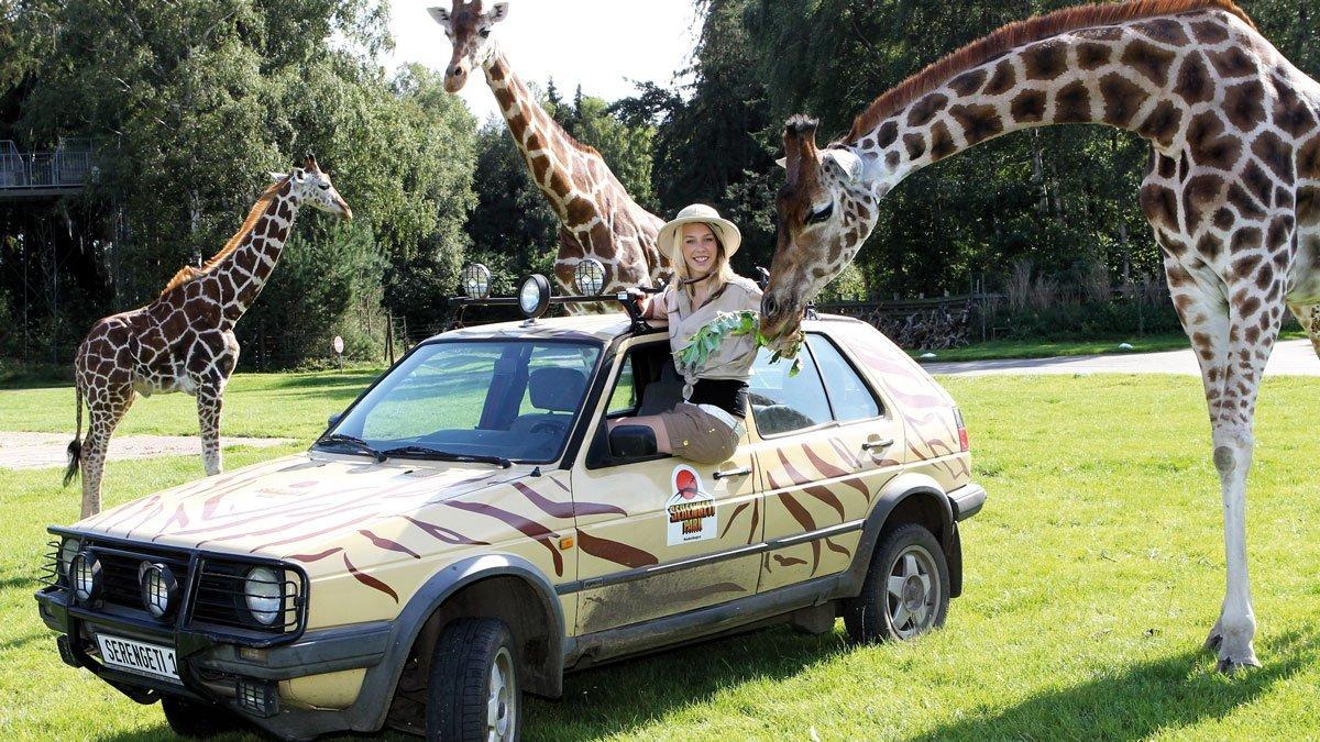 Serengeti Park Mädchen mit Giraffen