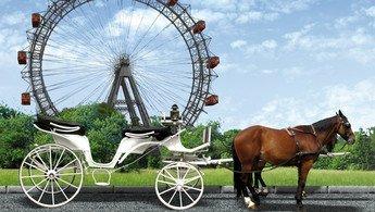 Exkursion Wien