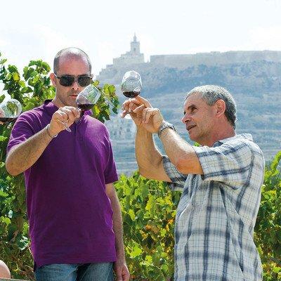 Weinverkostung in Meridiana