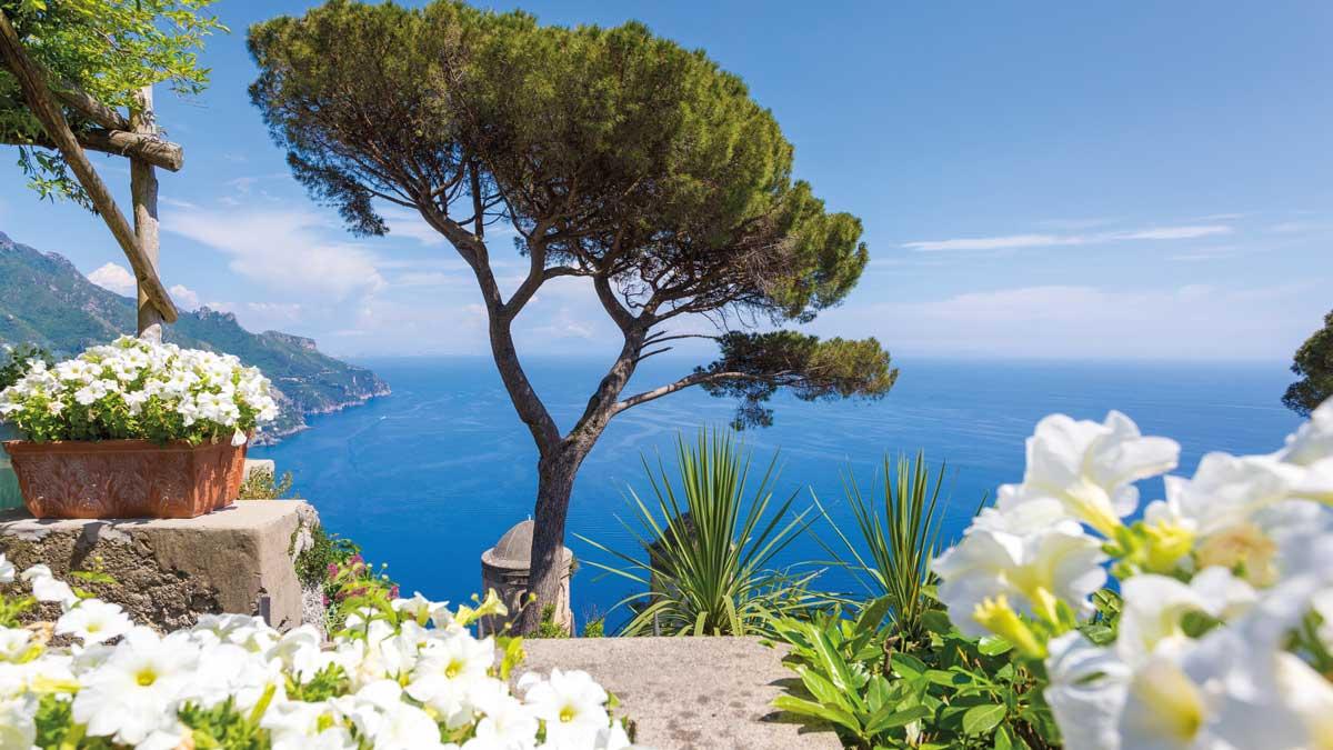 Die Amalfiküste gesäumt mit weißen Blumen