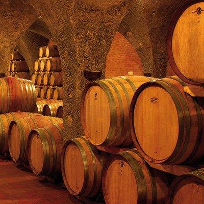 Besuch Weinmuseum