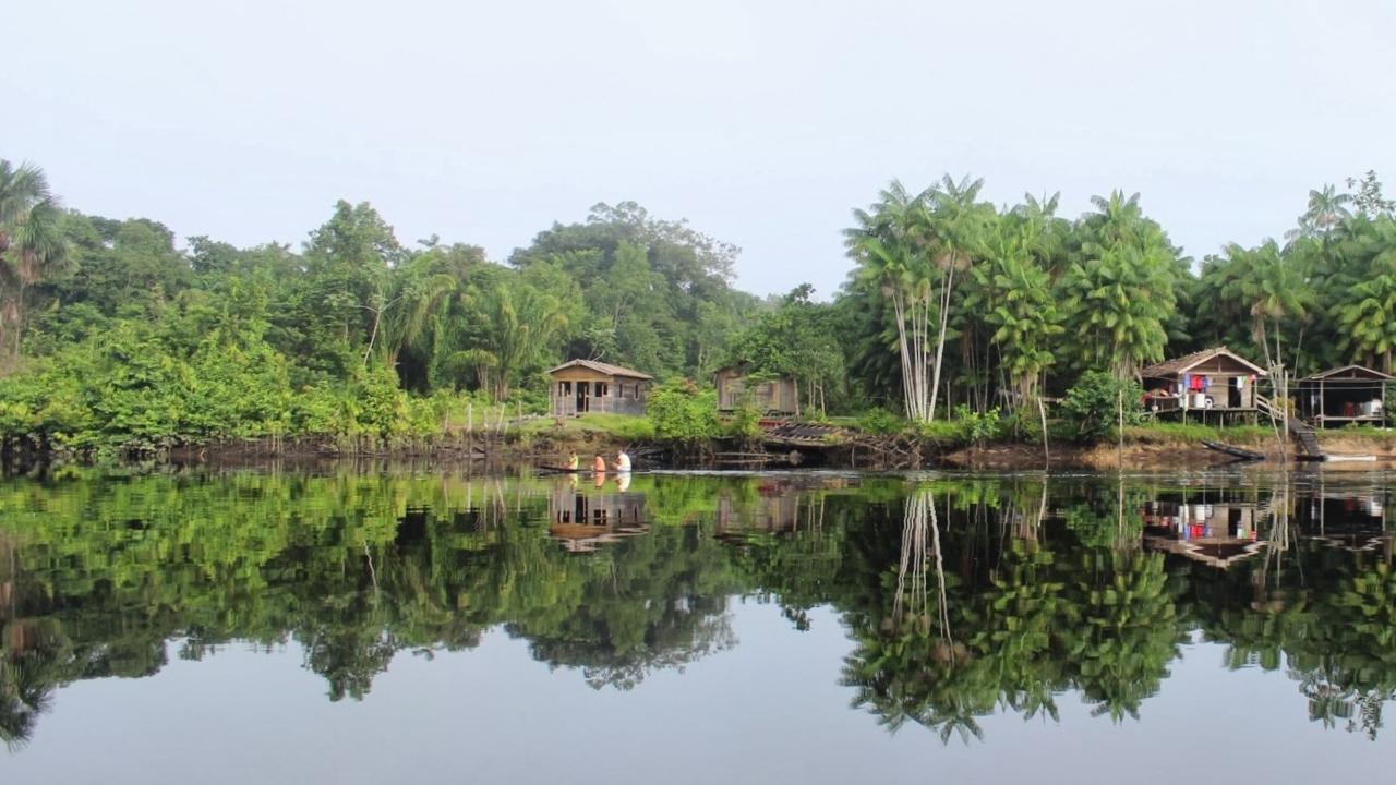 Ufer des Baia de Guajara - Regenwaldschutzprojekt